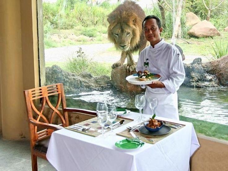 Inclusions: Welcome Drink Safari Journey (Unlimited and Express Line) Fresh Water Aquarium Animal Show Harimau - - YukmariGO.com