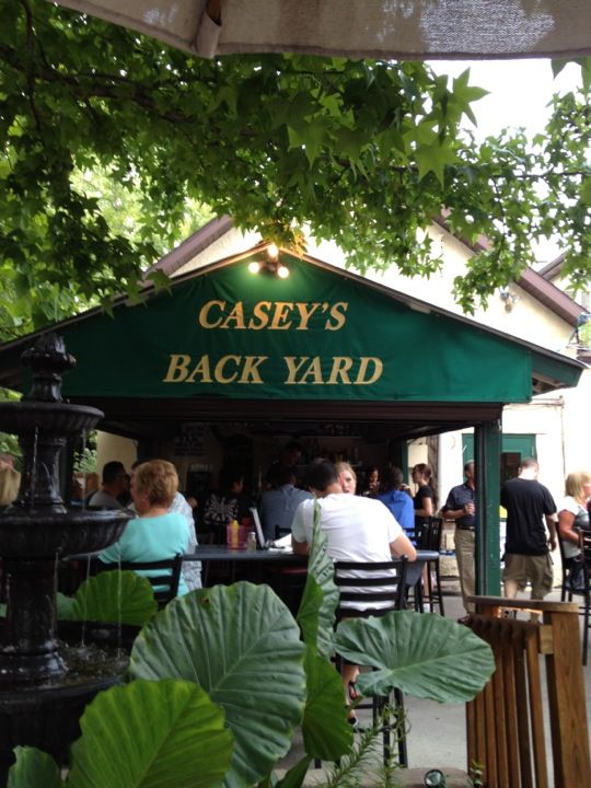 Great food! Great Fun! The backyard is perfect for summer. New Year's Eve Celebration! So much fun in New Buffalo Michigan.