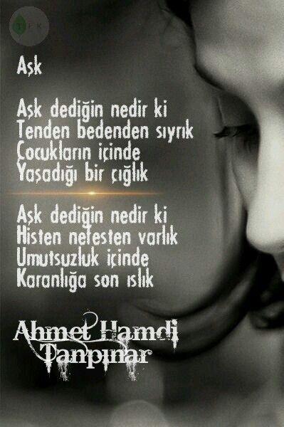 Ahmet hamdi Tanpınar (TEK)