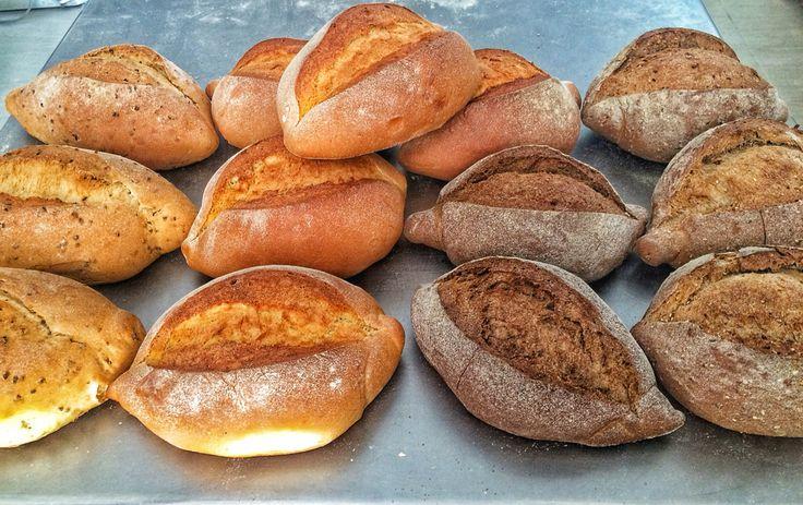 Pane di Soia- Kamut - Segale e 5cereali  www.chicchedigrano.com