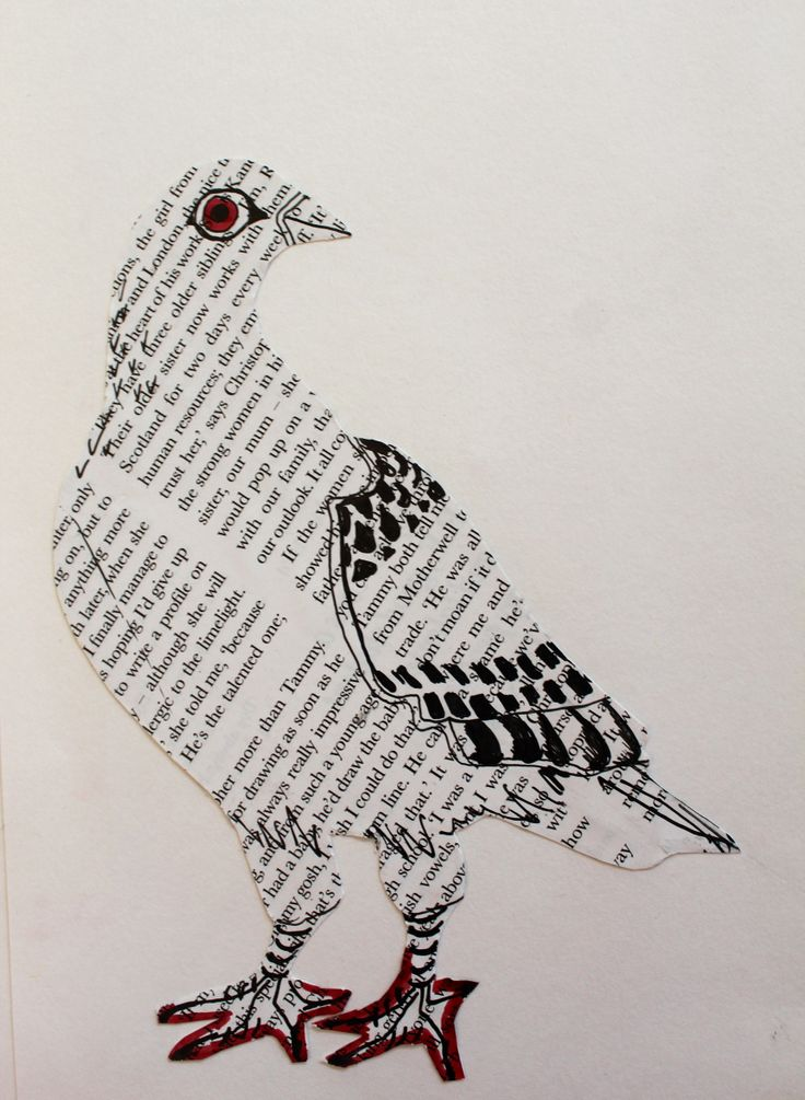 Collage pigeon by Helen Wells