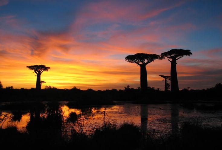 Vous collectionnez les belles photos ? Vous trouverez votre bonheur à #Madagascar ! :) #voyage