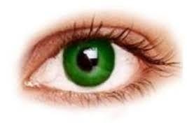 """Résultat de recherche d'images pour """"couleur complémentaire du vert"""""""