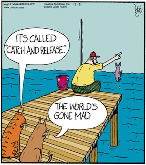 Funny cartoon fishing - photo#41