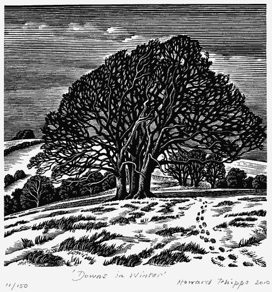 Downs in Winter - Howard Phipps
