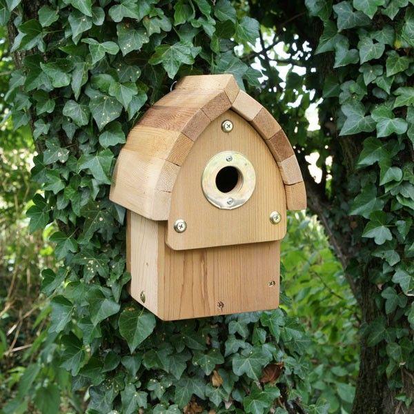 birdbox - Google-søk