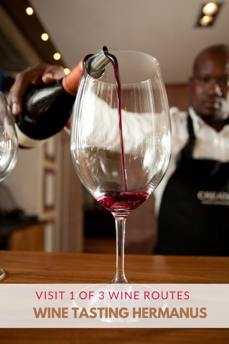 Wine Tasting on1 of the 3 Wine Routes in and around Hermanus