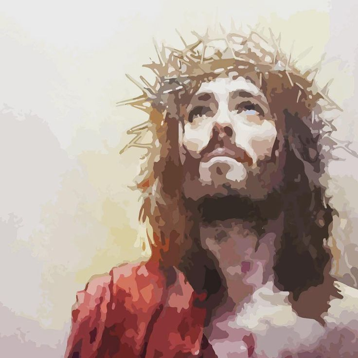 I gave my back to the smiters, and my cheeks to them that plucked off the hair: I hid not my face from shame and spitting. Isaiah 50:6 #crucified #lds #isaiah #christ #blessed