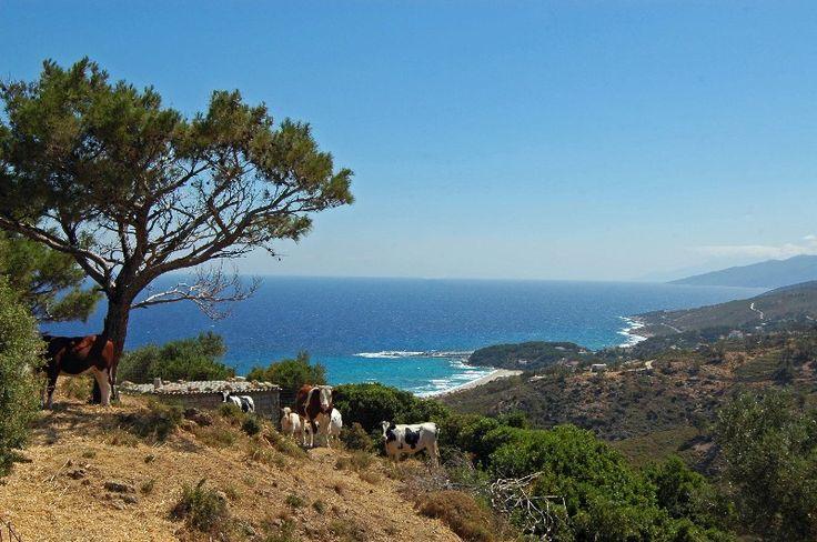 Foto's van Ikaria - Griekse foto's - Het Griekenland fotoalbum
