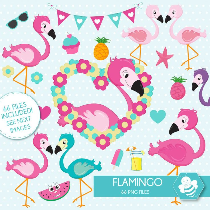 Flamingo Clipart, commercial use, flamingos digital clip art, bird digital images, CL0039 by Sweetdesignhive on Etsy