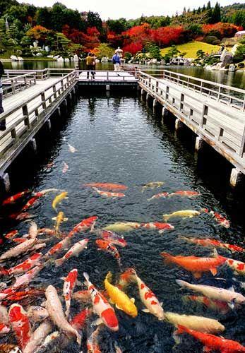 Sankei-en, Hiroshima.Looking for more information aboout Hiroshima? Go Visit Japan Visitor. http://www.japanvisitor.com/japan-parks-gardens/sankeien