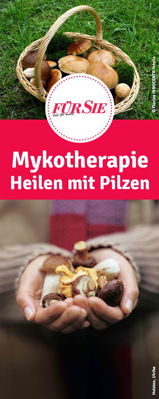 Pilze sind nicht nur lecker, sondern können auch heilen. Hier erfahrt ihr Alles über Mykotherapie -  das Heilen mit Pilzen