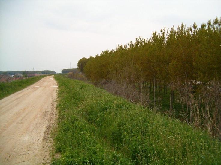 La Strada del Tartufo, www.stradadeltartufo.org