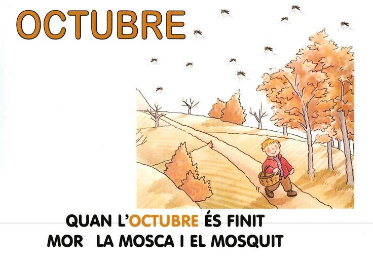 Dita OCTUBRE P5