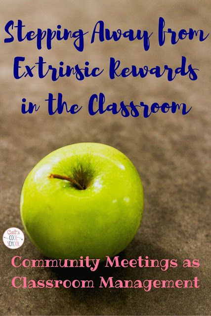 The one about why I stopped wasting my money on rewards {focus on intrinsic rewards}