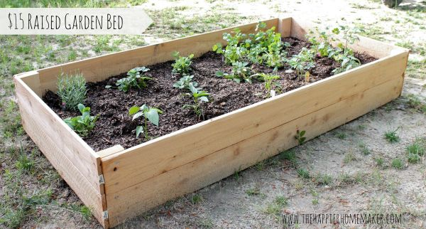 15 Raised Garden Bed Using Cedar Pickets Vegetable 400 x 300