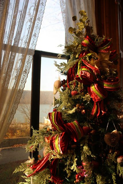 154 Best Images About Christmas Tree On Pinterest Trees