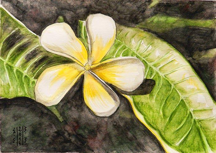 Maia Martin Pictura: Grafica Maia Martin
