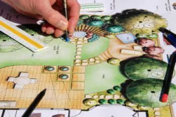 Learn the Basics of Landscape Design for Professional Results