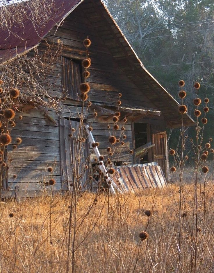 Old barn...love it