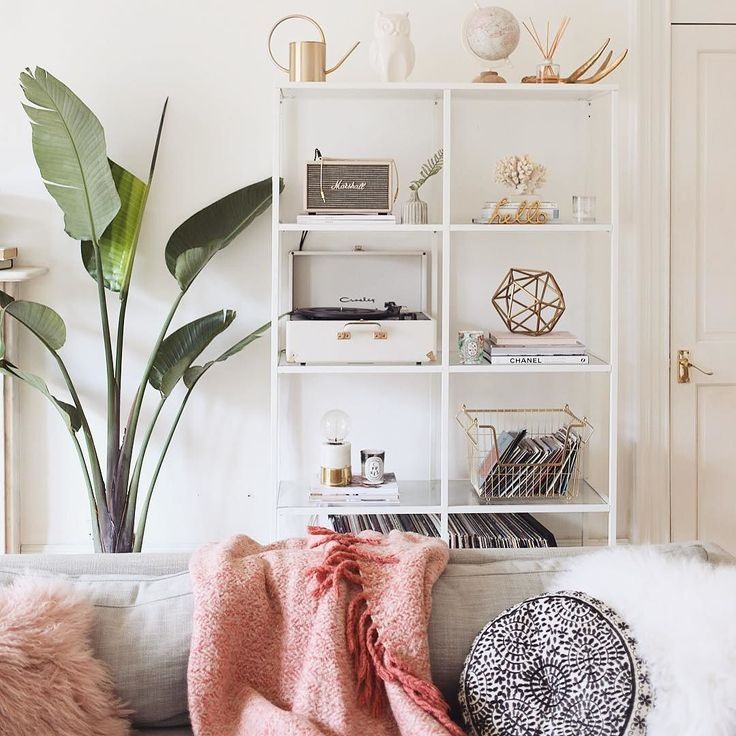 My plant is hatching a new leaf and I am v v excited