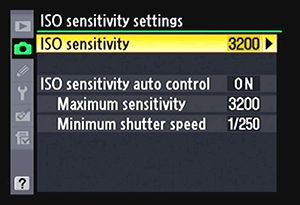 It is extremely hard to take good pictures without a good understanding of how ISO works and what it does. Camera ISO is one of the three pillars of photography (the other two being Aperture and Shutter Speed) and every photographer should thoroughly understand it, to get the most out of their equipment. Since this article is for beginners in photography, I will try to explain ISO as simple as I can.