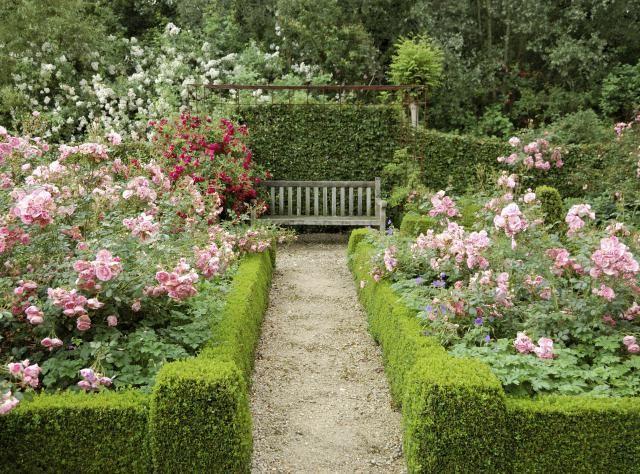 Best 25+ Rose garden design ideas on Pinterest
