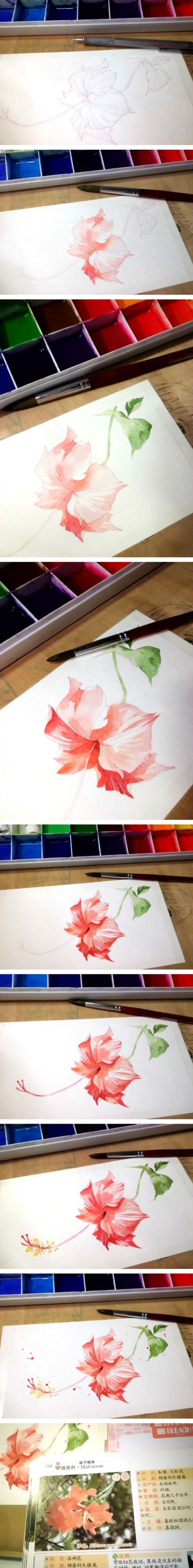 The best images about art tutorials on pinterest watercolour