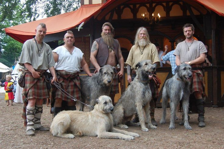 My favorite things in one picture : vikings and irish wolfhounds