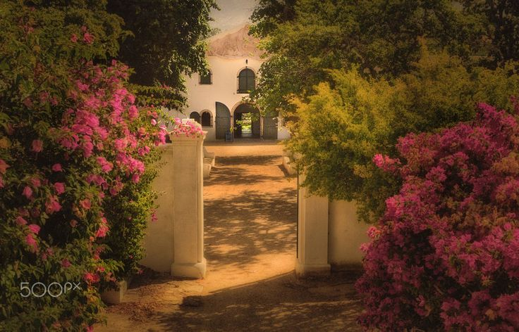 """Groot Constantia"" by JHanna . on 500px"