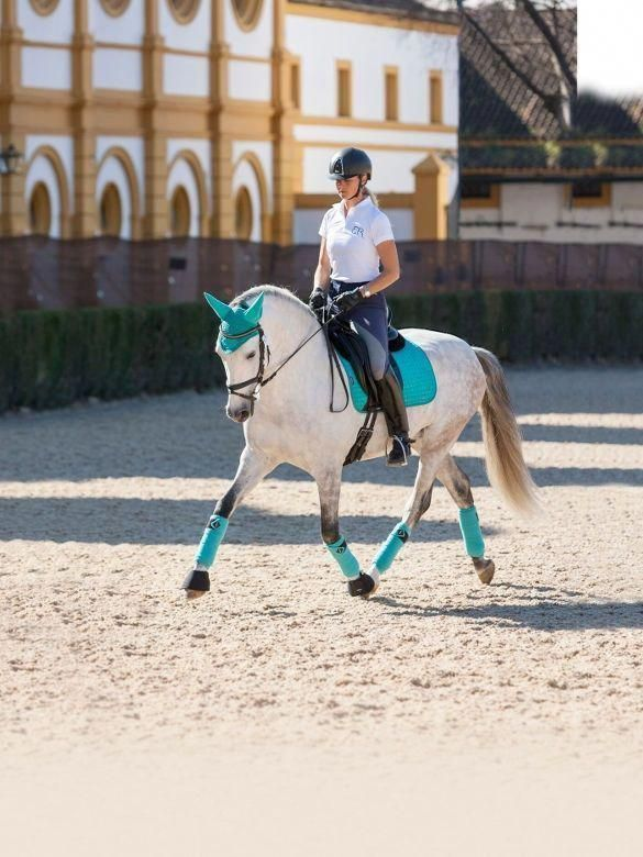 LeMieux Turquoise Dressage Matchy Set Horse Rider #equestriangearbeautiful