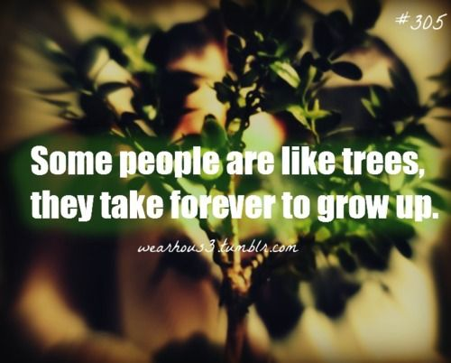 Immature Adults Quotes | Tags: immature growth maturity life quotes reality quotes people ...