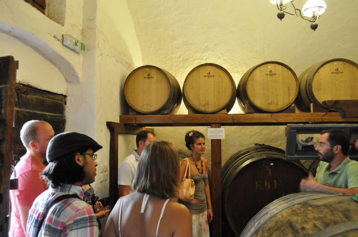 tour at the wineries