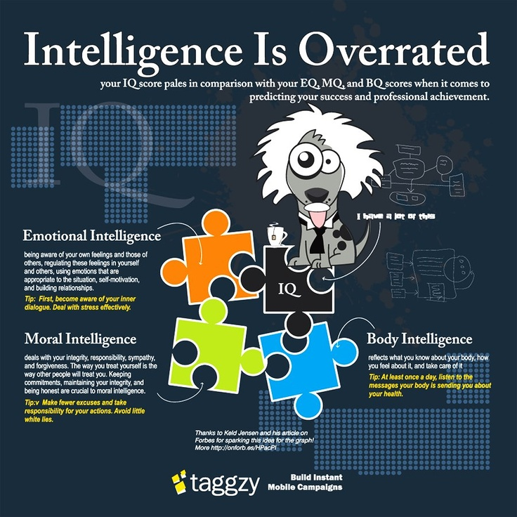 Intelligence Is Overrated: your IQ score pales in comparison with your EQ, MQ, and BQ scores when it comes to predicting your success and professional achievement.