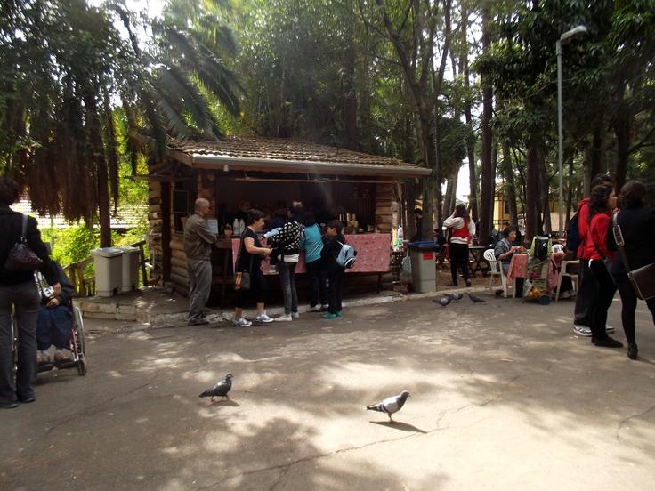 Café da manhã orgânico em parque da Água Branca