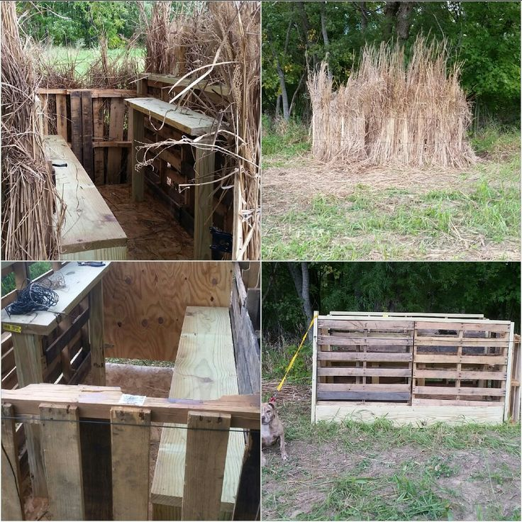 DIY Pallet blind and buffalo  grass