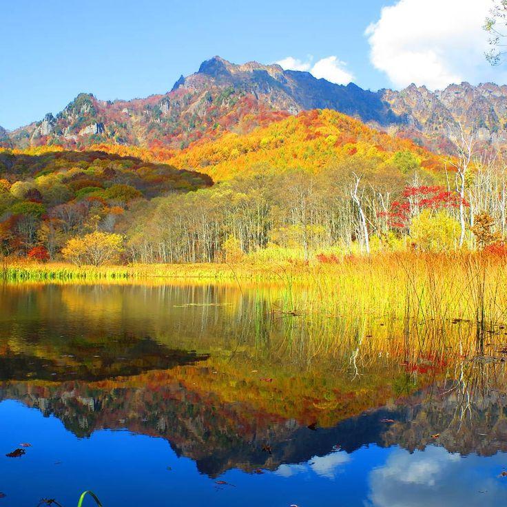 もうすぐやってくる秋の風物詩と言えば「紅葉」。毎年紅葉の季節を楽しみにしている方も多いのでは?今回は2016年おすすめの紅葉スポットの中でも、長野県内で密かに有名な紅葉名所「戸隠高原」をご紹介。実はこの「戸隠高原」にある鏡張りの景色があまりにも美しいと話題沸騰中なんです。一体、どんな紅葉を見ることができるのでしょうか。