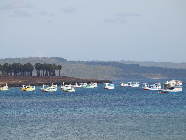 Boats in Kupang