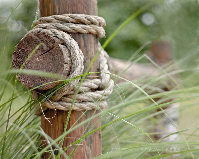 wooden horse fencing with rope