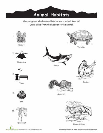 animal habitats match up cc cycle 2 science animal habitats science worksheets habitats. Black Bedroom Furniture Sets. Home Design Ideas