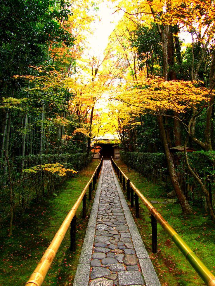 Kyoto, Japan: Photos, Paths, Peace Gardens, Baby Beds, Pathways, Places, Japan Gardens, Daitokuji Temples, Kyoto Japan