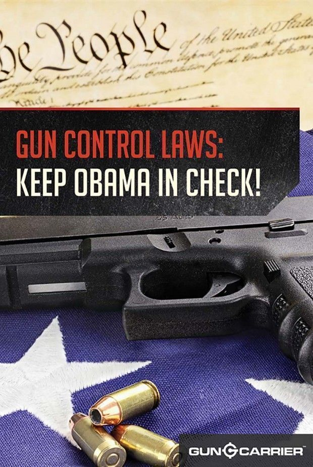 AAUP Calls for Sensible Gun Control Measures