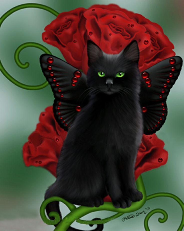 борисовский район черные коты блестящие картинки если, дождик вдруг