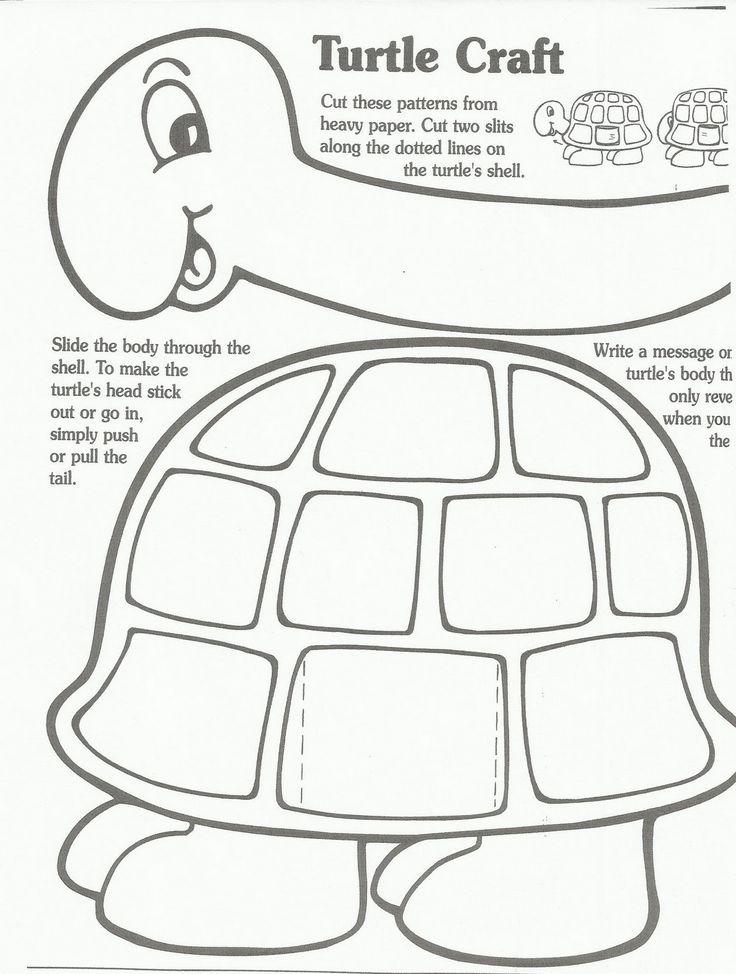 turtleteachersfriend.jpg 1,208×1,600 pixels