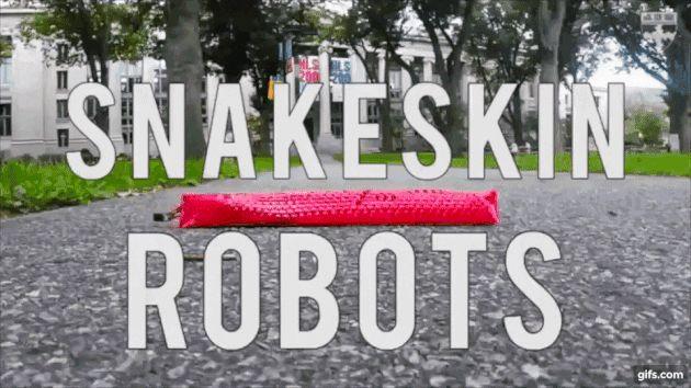 ハーバード大学の「SEAS(John A. Paulson School of Engineering and Applied Sciences)」の研究者らは、蛇に触発された切り紙を用いたソフトロボットを開発しました。