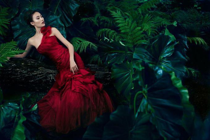 Рекламная кампания Vera Wang весна 2013  Шу Пэй (Shu Pei) стала лицом весенней кампании Vera Wang. К ней присоединился Дэвид Чанг (David Chiang) .