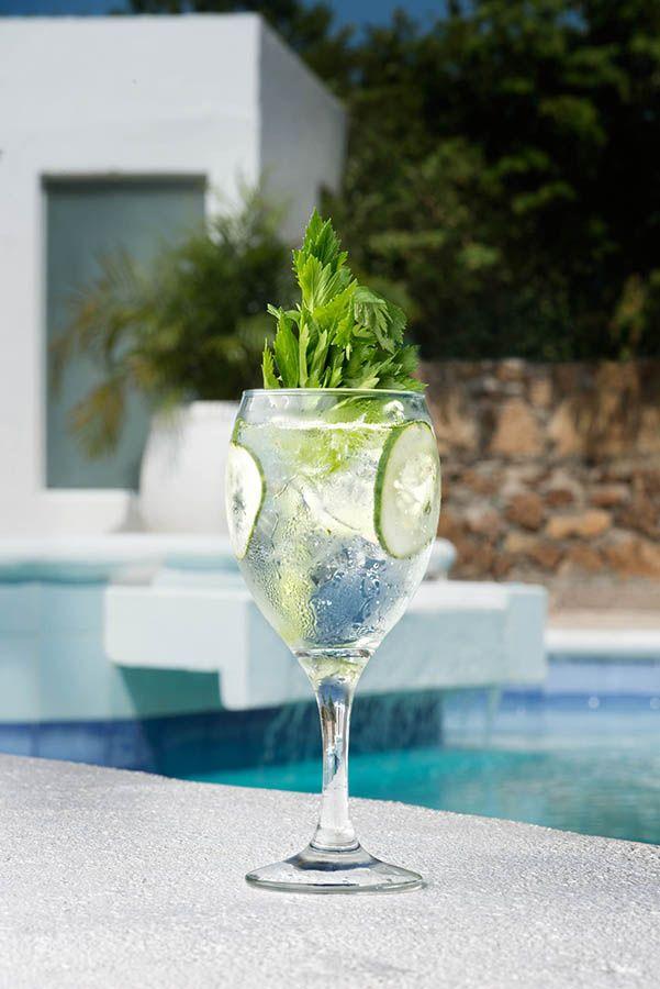 Gin Tonic Avista