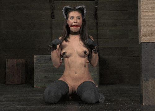 Upskirt under desk clips