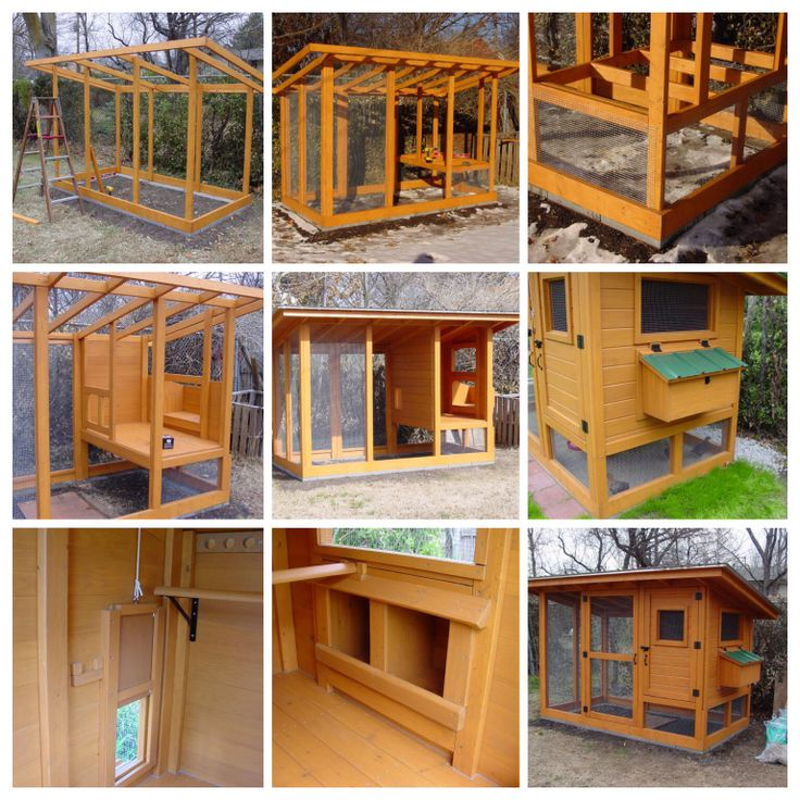 Chicken coop i like. Prachtig kippenhok, grote inspiratie voor te bouwen.