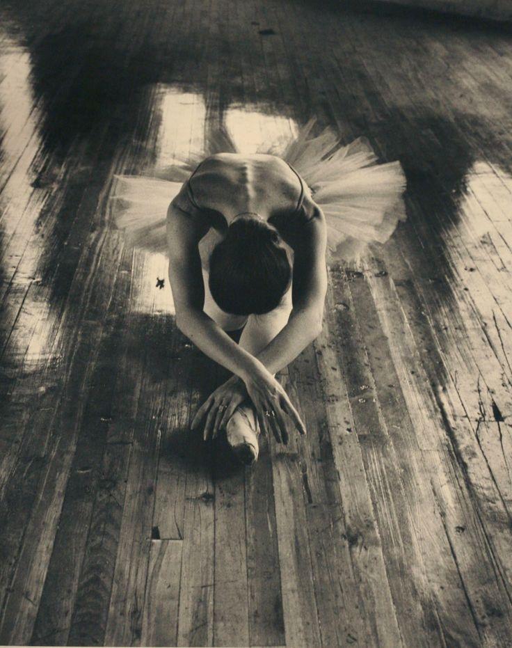 André Kertész, Untitled (Vanessa Harwood: principle, NBC), 1981. Jane Corkin Gallery, Toronto (via).